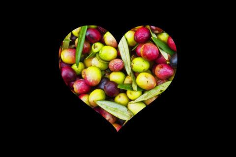 Cardiovascular_oliveemotion_site