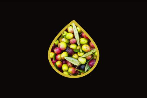 oliveemotion_1-liter-of-olive-oil-background